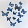 12 Various Blues & Different Size Butterflies 3D WallArt