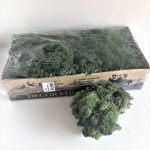 Moss Dark Green