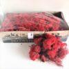 Red Icelandic Reindeer Moss Preserved Dried Craft Flower Decoration