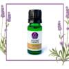 Cinnamon Essential Oils 100% Pure Natural Aromatherapy oil 10ml